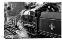 Steam train 31806, Canvas Print