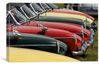 MG car lineup, Canvas Print