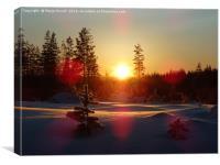 Cold sun, Canvas Print