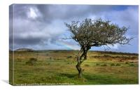 Rainbow over the Cheesewring, Canvas Print