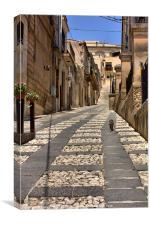 Sicilian alley cat, Canvas Print