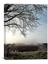 A misty morn in Oxfordshire, Canvas Print