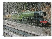 Flying Scotsman, Canvas Print