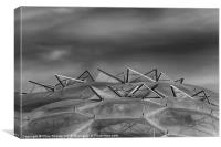 Eden Project Roof 2 Black and White, Canvas Print
