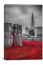 Blood Swept Lands 3 , Canvas Print