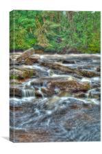 The Falls, Canvas Print