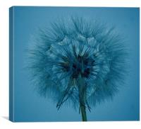 Shades of blue, Canvas Print