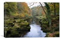 The Strid at Bolton Abbey, Canvas Print