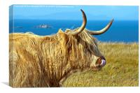 Highland Beauty Highland Cow, Canvas Print
