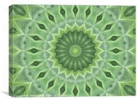 Green Beauty, Canvas Print