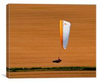 Wheat Field Paraglider, Canvas Print