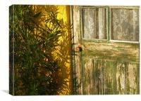 Sun Warmed and Weathered, Canvas Print