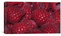 Raspberry cluster, Canvas Print