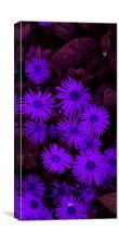 Purple Flora Display, Canvas Print