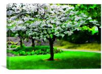 Dreamy Blossom Tree, Canvas Print