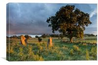 Nine Stones Close, Canvas Print