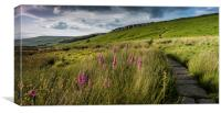 Stanage Edge Panoramic, Canvas Print