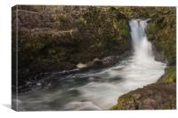 Skelwith Force, Canvas Print
