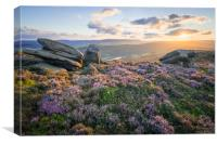 White Tor Heather Sunset, Canvas Print