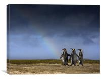 Admiring the rainbow, Canvas Print