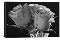 Black & White Rose, Canvas Print