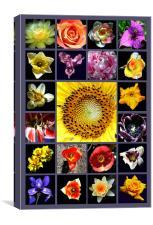Grand Floral Composite, Canvas Print