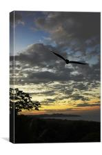 Sunrise and Vulture, Canvas Print