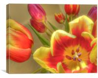 Tulips 2, Canvas Print