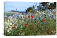 Summer Bloom, Canvas Print