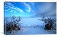 Last winter, Canvas Print