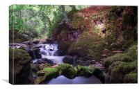 Rumbling Bridge Gorge, Canvas Print