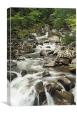 Black Linn Falls, Canvas Print