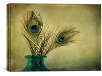 peacock feathers and vase