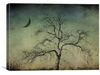 beneath a dark moon, Canvas Print