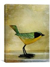 green jay, Canvas Print
