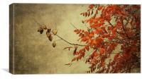 a golden autumn light, Canvas Print