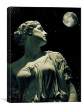 by moonlight, Canvas Print
