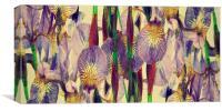 vintage irises abstract, Canvas Print