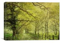 walking in the sunlight, Canvas Print