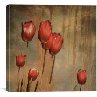 textured tulips - vintage grunge, Canvas Print