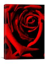 ruby red, Canvas Print