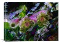 hothouse flowers, Canvas Print