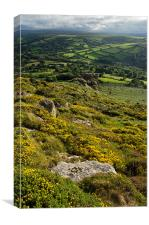 Gorse, Tors and Fields, Canvas Print
