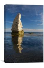 Butter Rock - Dorset, Canvas Print