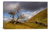 Lake District composition, Canvas Print