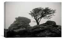 Holwell Tor in the Mist, Canvas Print