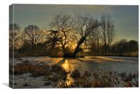 On Golden Pond, Canvas Print
