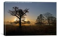 Sunrise in the Culm Valley, Canvas Print