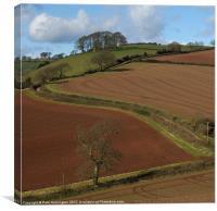 Red soil, Canvas Print