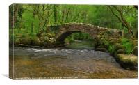 Packhorse Bridge in Hisley Wood, Canvas Print